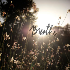 breathe-carre